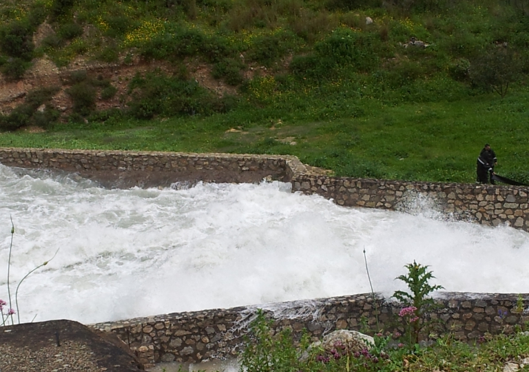 Embalse Guadalcacín
